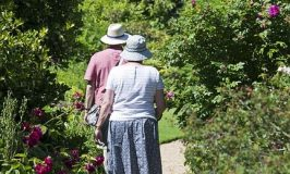 elderly-couple-829305_960_720